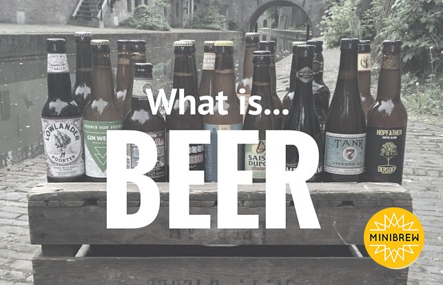 What is Beer