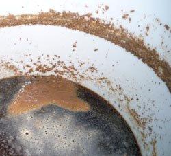 yeast culture grow 3